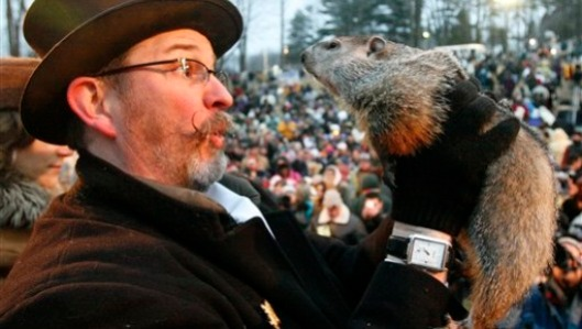 Punxsutawney Phil, the most famous of all the weather predicting Marmots.