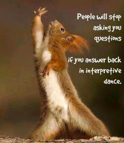 interpretive dance squirrel
